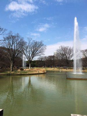 代々木公園噴水